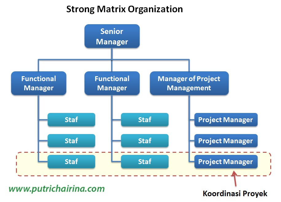 Strong Matrix Organization