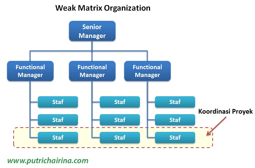 what distinguishes a weak matrix from strong matrix Assignment help business economics most projects completed using traditional project management are done in a weak matrix organization most projects completed in an agile project management framework use a strong matrix.
